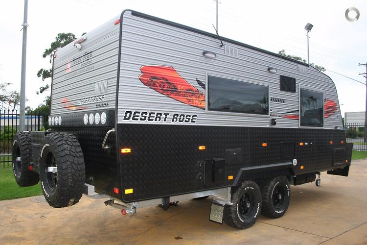 2017 New Age Desert Rose